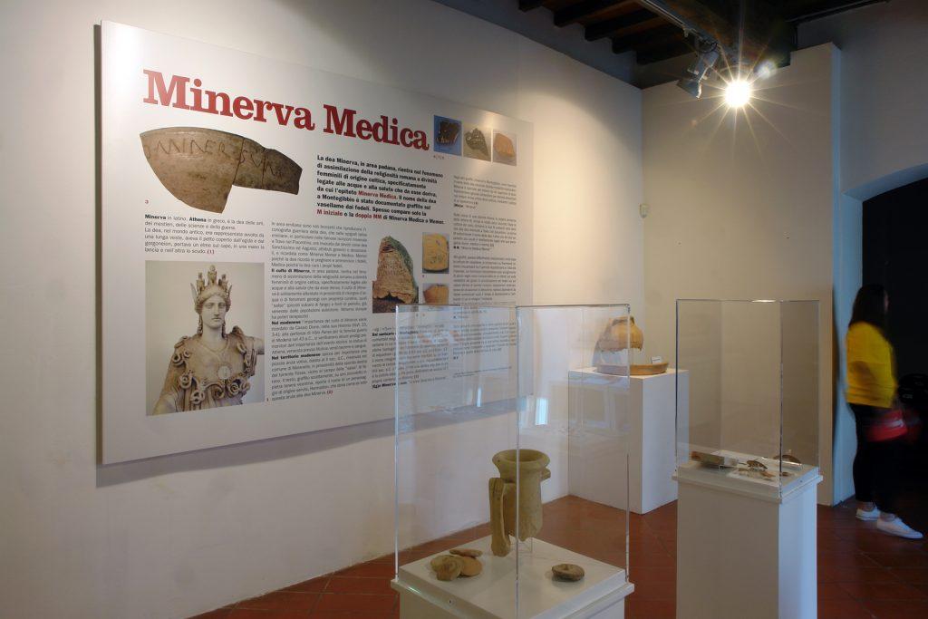 8.Minervamedica
