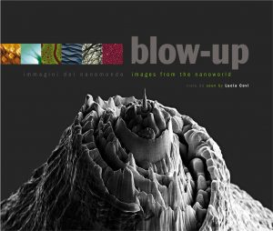 Blow up _ Immagini del nanomondo